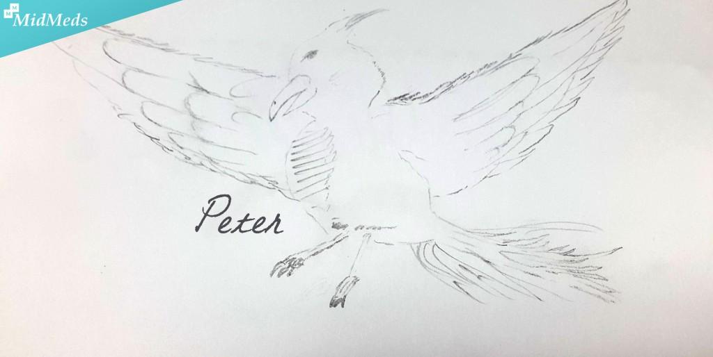 Bird_Peter