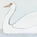 Draw a Bird Day 2016!