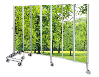 Customised Privacy Screens